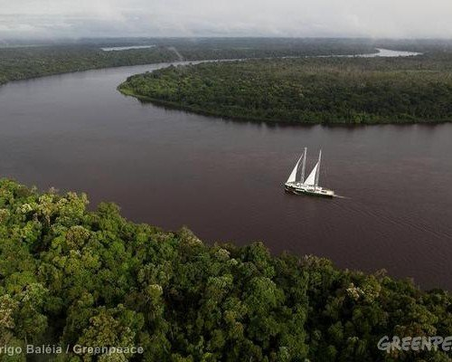 The Rainbow Warrior in the Amazon