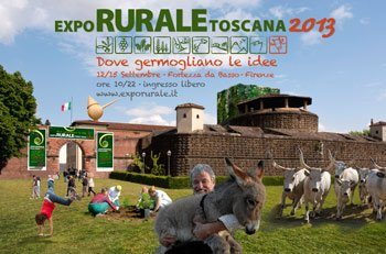expo_cartolina_2013_no-loghi