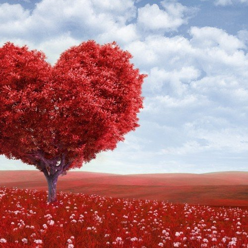 red-heart-tree-red