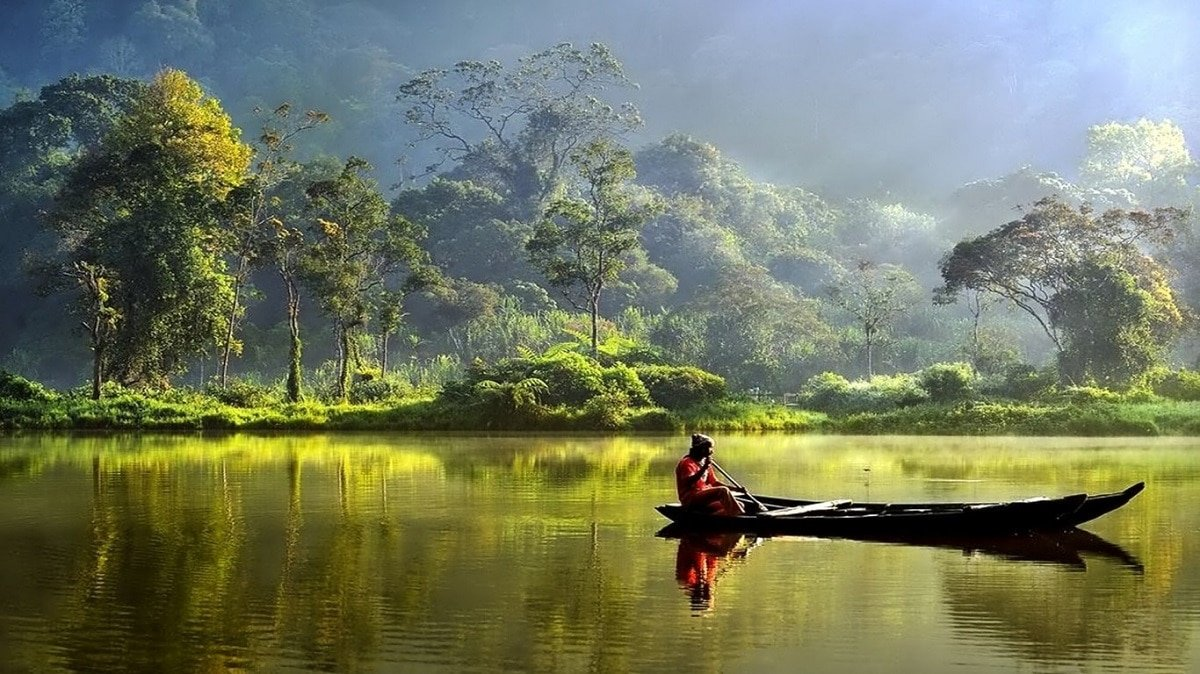 Indonesia-Foresta